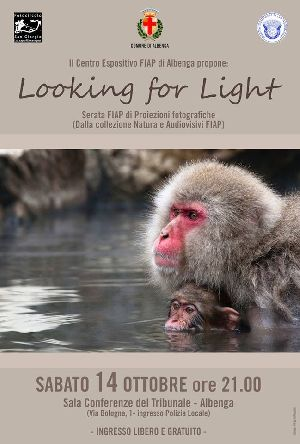 /lookingforlight